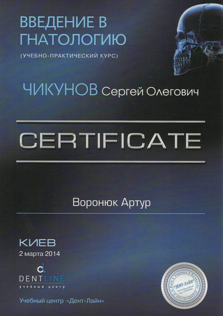 voronyuk20-722x1024