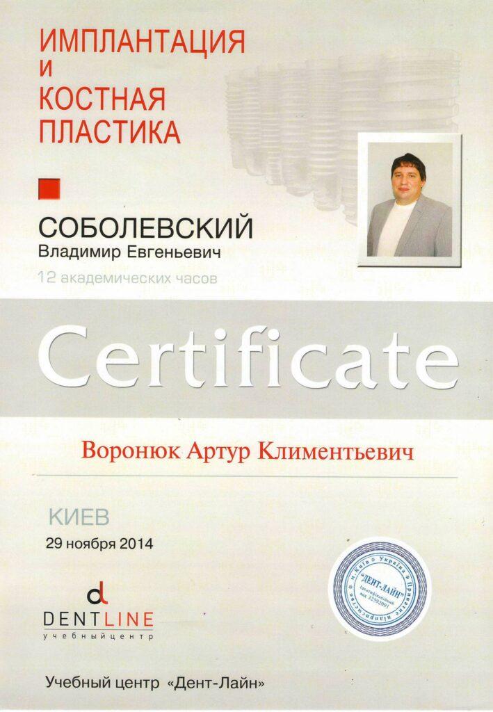 voronyuk3-709x1024